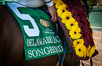 WILMINGTON, DE - JULY 15: The saddle cloth of Songbird #5 in the G1 Delaware Handicap at Delaware Park in Wilmington, Delaware. (Photo by Sophie Shore/Eclipse Sportswire/Getty Images)