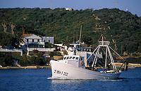 Europe/Espagne/Baléares/Minorque/Mahon : Retour de pêche au port