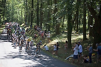 peloton led by Team SKY (safeguarding Chris Froom's yellow jersey) going through the forest<br /> <br /> stage 10: Tarbes - La Pierre-Saint-Martin (167km)<br /> 2015 Tour de France