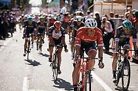 Jasper Stuyven (BEL/Trek-Segafredo) rolling in 3rd at Stage 13: Reggio Emilia &rsaquo; Tortona (167km)<br /> <br /> 100th Giro d'Italia 2017