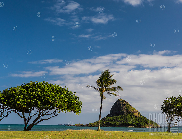 Kualoa Regional Park, with Chinaman's Hat in the distance, Windward O'ahu.