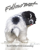 Marcello, REALISTIC ANIMALS, REALISTISCHE TIERE, ANIMALES REALISTICOS, paintings+++++,ITMCEDC1093A,#A# ,dogs,puppies