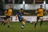 Jacob PERRY of London Scottish during the Championship Cup match between London Scottish Football Club and Ealing Trailfinders at Richmond Athletic Ground, Richmond, United Kingdom on 23 November 2018. Photo by David Horn/PRiME Media Images