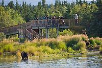 Tourists view brown bears from the viewing platform along the Brooks River, Katmai National Park, southwest, Alaska.
