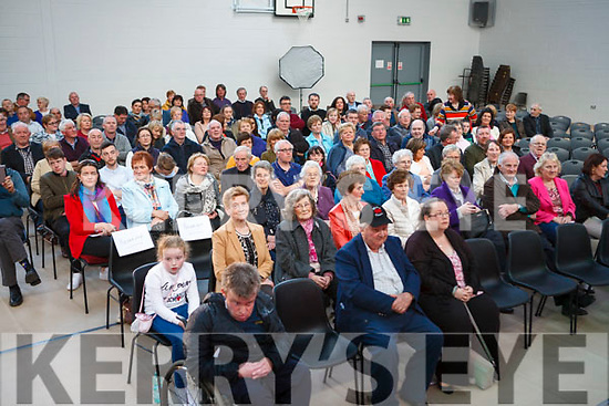 A Section of the large crowd attending the concert<br /> Frankie Gavin &amp; De Danann in concert  last Sunday night in Col&aacute;iste Ide &amp; Iosef  at the Fleadh By The Feale