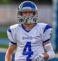 Bethel Hornets - 2016