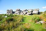 Granite upland landscape at Combestone Tor, near Hexworthy, Dartmoor national park, Devon, England, UK