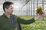 Foto: VidiPhoto<br /> <br /> GENDT  - Ren&eacute; Willemsen van potplantenkwekerij Willemsen-Weijs uit Gendt (gemeente Lingewaard) is voorzitter van Kom in de Kas regio Arnhem-Nijmegen.