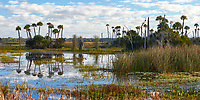 Scenic view on a winter morning in Orlando Wetlands Park