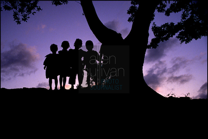 Children stand by a tree at sunset on the island of Roatan, Honduras in the early 1980s. Backlit silhouette.