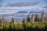 Pendle Hill, Lancashire from Longridge Fell.