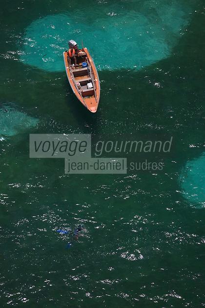 France/DOM/Martinique/env Le Vauclin: sur la cote ouest - bateau traditionnel gommier et pécheur sous marin prés de la barrière de corail