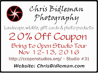 Bring this coupon with you to the Open Studio tour and receive 20% off your purchase! The studio tour is Nov 12 - 13, 2016 throughout Clark County, WA. See http://ccopenstudios.org/ for more information and tour map. Chris Bidleman Photography is studio #31 on route.
