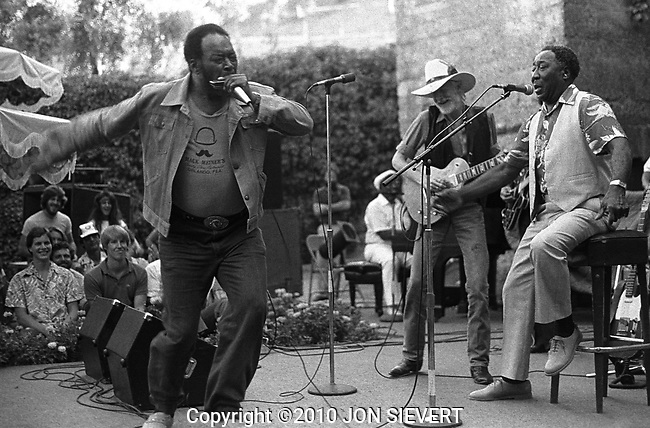 James Cotton, Johnny Winter, Muddy Waters. Paul Masson Winery, Saratoga, CA, 9/12/81