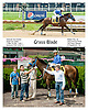 Grass Blade winning at Delaware Park on 8/8/13