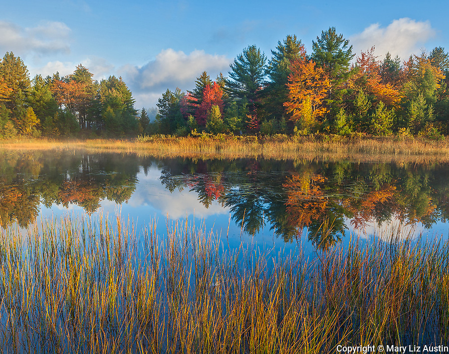 Lake Superior State Forest, Michigan: Dawn reflections on Kingston Lake with autumn colored forest