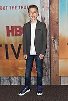 "10 January 2019 - Hollywood, California - Phoenix Elkin. ""True Detective"" third season premiere held at Directors Guild of America. Photo Credit: Birdie Thompson/AdMedia"