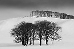 Winter landscape, Hokkaido, Japan<br />