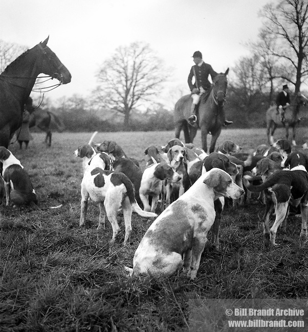 Meet of the fox hounds 1940s