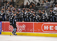 Milwaukee Admirals players celebrate a goal during the second period of an AHL hockey game against the San Antonio Rampage, Thursday, Jan. 16, 2014, in San Antonio. (Darren Abate/AHL)