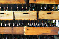 The winery with bottles in wooden crates Bodega Vinos Finos H Stagnari Winery, La Puebla, La Paz, Canelones, Montevideo, Uruguay, South America