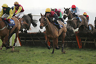 Taunton Racecourse - 31st January Meeting