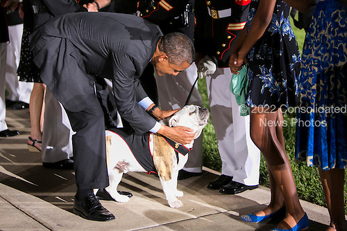 United States President Barack Obama pets Chesty XIV, the Marine Corps Mascot at the Marine Barracks Washington, D.C. Evening Parade in Washington, D.C., on Friday, June 27, 2014. <br /> Credit: Kristoffer Tripplaar  / Pool via CNP