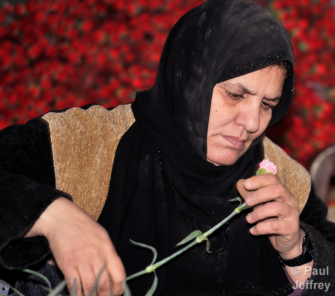 A Palestinian woman inspects a carnation destined for export to Europe, in Rafah, in the southern part of the Gaza Strip. Gazan farmers once exported more than 50 million cut flowers a year, but the Israeli government's blockade of the territory stopped most of that commerce. Under intense international pressure, Israel partially eased its restrictions on flower exports in 2010, yet sales to European markets remain only a quarter of what they once were.