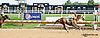 Breezy Girl winning at Delaware Park on 8/7/14