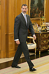King Felipe VI of Spain during a royal audience at Zarzuela Palace in Madrid, Spain. January 08, 2015. (ALTERPHOTOS/Victor Blanco)