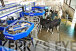 The Automative Milking -  Delavel Demonstration at O'Hanlon's Family farm Ballyduff on Thurday