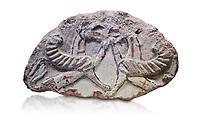 Phrygian relief fragment depicting two griffins. 8th-7th century BC . Çorum Archaeological Museum, Corum, Turkey