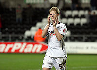 Pictured: Alan Tate of Swansea City<br />
