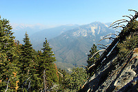 Stock photo: Gorgeous view of Sierra Nevada peaks of Sequoia national park from the Moro Rock.