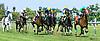 Texas Zip winning at Delaware Park on 7/3/17