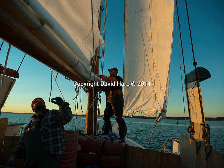 Deckhands aboard the skipjack Rebecca T Ruark raise the main sail to begin a day of oyster dredging on the Choptank River.