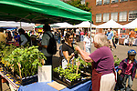 Hollywood District Farmers Market, Portland, Oregon