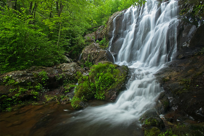 Spring flow over Dark Hollow Falls
