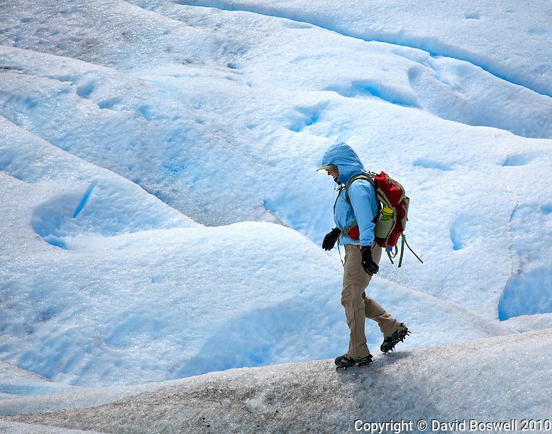 Trekking on the blue ice of Glacier Perito Moreno in Parque Nacional los Glaciares, Argentina.