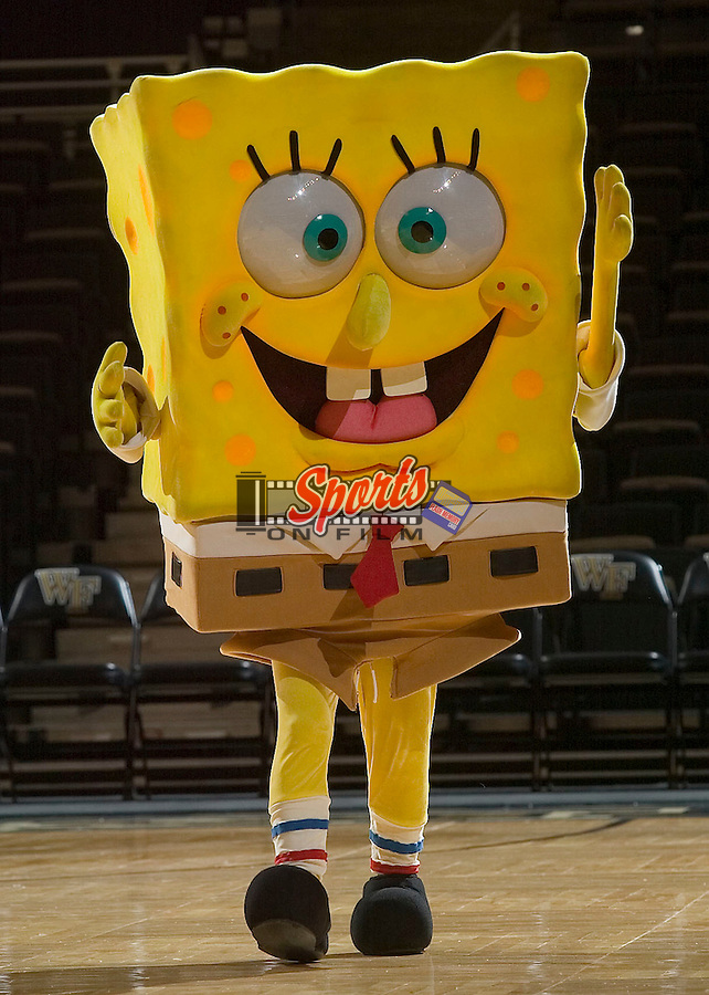 Spongebob Squarepants entertains the crowd on middle school day at the LJVM Coliseum Wednesday, December 19, 2007 in Winston-Salem, NC.  The Wake Forest Demon Deacons defeated the College of Charleston Cougars by the score of 70-39.