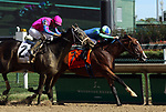 September 14, 2019 : Go Google Yourself (#7, Brian J. Hernandez Jr.) wins the G3 Locust Grove Stakes at Churchill Downs, Louisville, Kentucky. Trainer Paul J. McGee, owner Jay Em Ess Stable (Samantha Siegel). By Into Mischief x Taunt (Deputy Minister) Mary M. Meek/ESW/CSM
