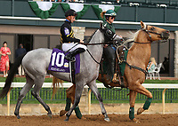 "October 07, 2018 : #10 Next Dance and jockey Adam Beschizza in the 1st running of The Indian Summer $200,000 ""Win and You're In Breeders' CupJuvenile Turf Sprint Division"" for trainer Mark Casse and owner John Oxley  at Keeneland Race Course on October 07, 2018 in Lexington, KY.  Candice Chavez/ESW/CSM"