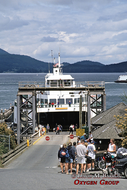 Ferry In Puget Sound