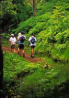 Hiking Maunawili trail, Kailua, Oahu