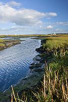 Saltmarsh behind Hurst Spit at Milford-on-Sea, Hampshire, UK
