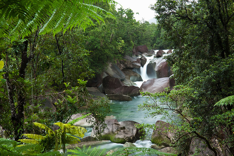 View through rainforest to Devil's Pool at Babinda Boulders.  Babinda, Queensland, Australia