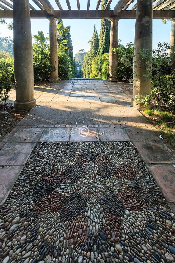Le domaine du Rayol en f&eacute;vrier : le jardin sud-africain, la pergola<br /> <br /> (mention obligatoire du nom du jardin &amp; pas d'usage publicitaire sans autorisation pr&eacute;alable)