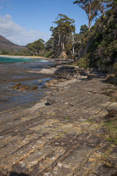 Tessellated Pavement is a shoreline, rocky terrace that has been fractured into tile-like pavement