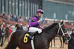 February 17, 2020: Warrior's Charge (6) with jockey Florent Geroux aboard after winning the Razorback Handicap at Oaklawn Racing Casino Resort in Hot Springs, Arkansas on February 17, 2020. Justin Manning/Eclipse Sportswire/CSM