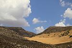 Golan Heights, the road to Nahal Yardinon